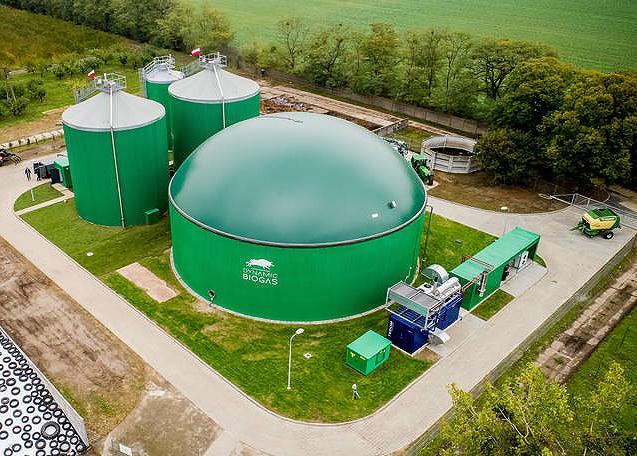 Dynamic Biogas